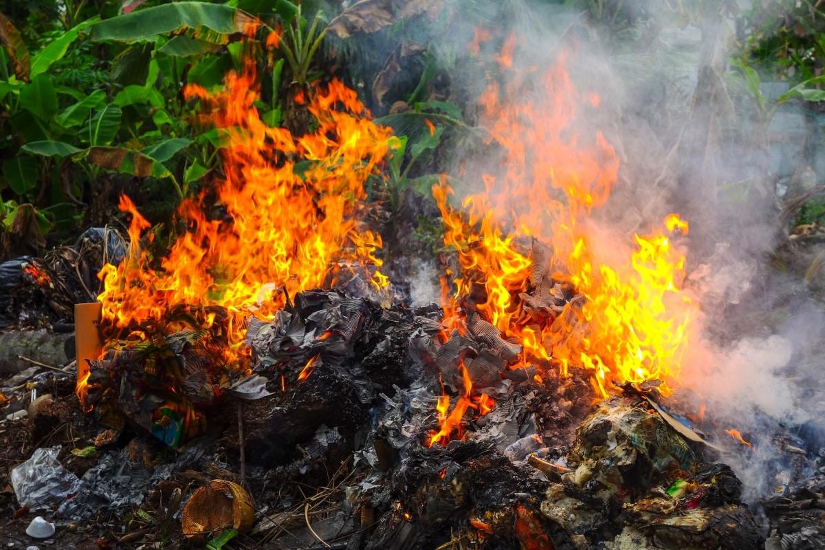 Когда разжигать костры запрещено | Можно ли сжигать мусор на своем участке