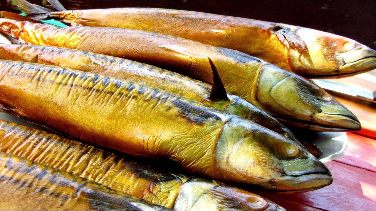 Рекомендации по копчению рыбы в домашних условиях | Как закоптить скумбрию жидким дымом в домашних условиях