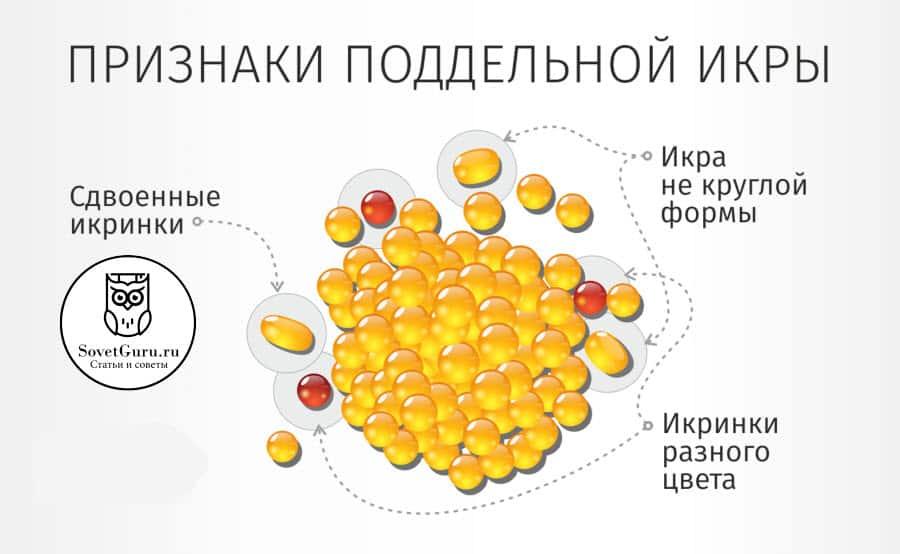 Визуальный осмотр икры | Как проверить красную икру в домашних условиях