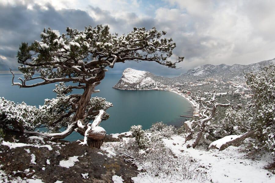 Ялта | В каких городах России тепло зимой: 11 мест с мягким климатом